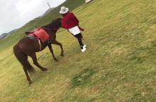 阴天⛅是大草原的硬伤啊[捂脸],还好有匹温顺的小马🐴。。。