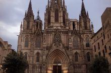 #网红打卡地#巴塞罗那大教堂