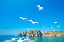 飞翔吧 海驴岛