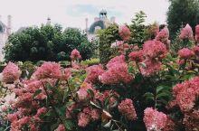 #向往的生活# 丁丁历险记的雪瓦尼城堡