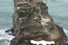 壮观的鸟岛