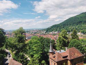 Hohenschwangau,Recommendations