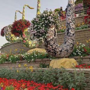 奇迹花园旅游景点攻略图