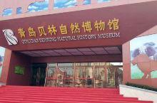 69.9一大一小!青岛这个7200㎡博物馆火了!400只珍稀动物与你0距离接触!