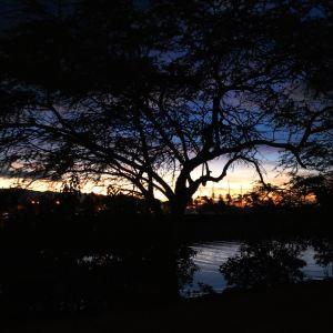 哈雷瓦海滩公园旅游景点攻略图