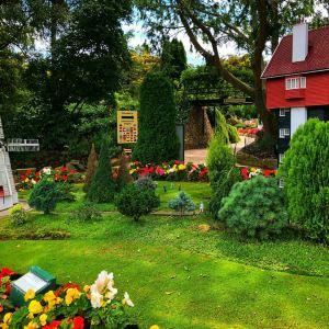 科金顿绿色花园旅游景点攻略图