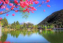 迷失在春天里,大理+丽江采风4日游