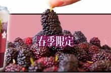 """奈雪可以喝的冰淇淋鲜果茶""""空降""""沈阳!仅售一个月…"""