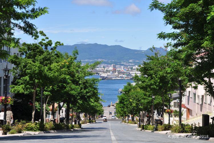 Mount Hakodate1
