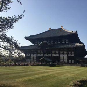 东大寺大佛殿旅游景点攻略图