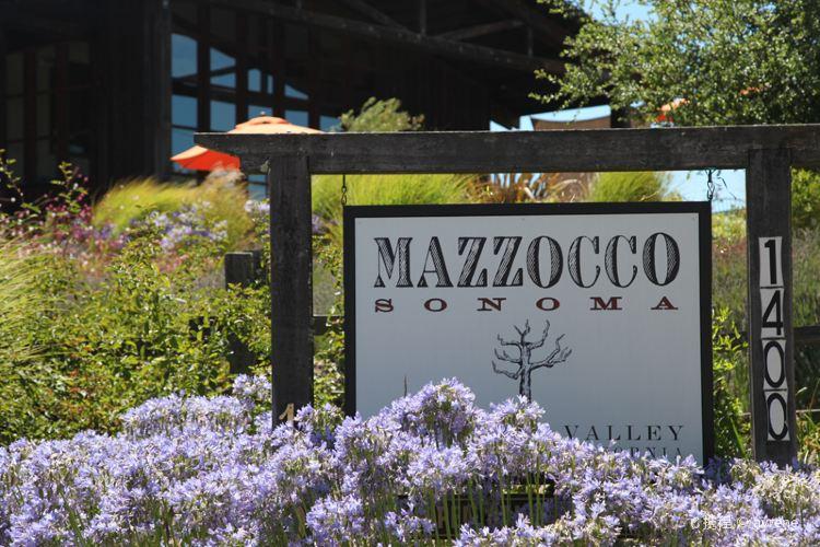 Mazzocco Winery3