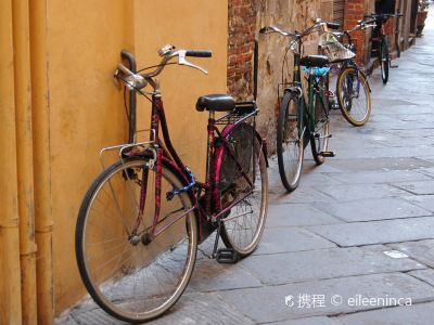 Florence by Bike