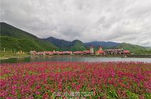 """森林湖泊、花海城堡……慢游成都,邂逅""""小瑞士"""""""