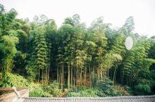 蜀南竹海占地七万余亩,各具特色的景点多达16处,望着地图我们也不免有些懵逼,只好向酒店老板打听路线。