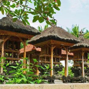 巴厘岛鸟园旅游景点攻略图