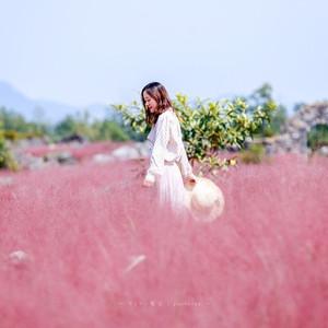 酉阳游记图文-遇见粉色初秋, 与重庆酉阳的三天两夜