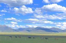 挑战不可能?19个小时北京一人自驾到藏区