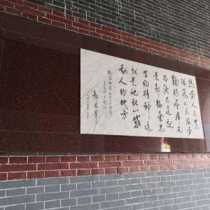 华东政法大学旅游景点攻略图