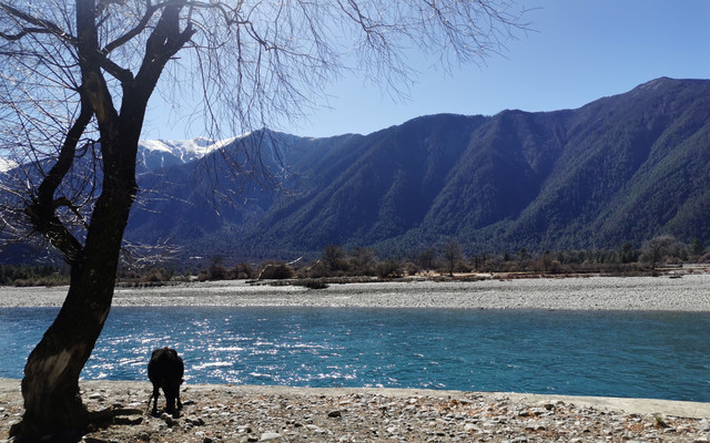 冬游西藏:蓝天绿水,日照金山,还有风景在路上