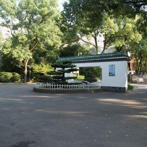 和平公园旅游景点攻略图