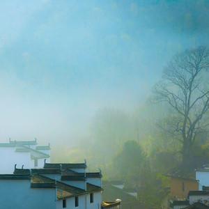 婺源游记图文-这才是婺源最美的地方,这个春天可别去错了!