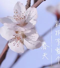 [浙江游记图片] 春日来信| 山河无恙,世间皆安,莫干山喊你来一场清肺自然之旅