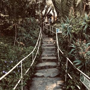 La Sebastiana聂鲁达故居旅游景点攻略图
