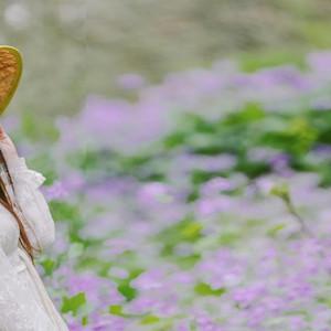 泰州游记图文-水润兴化,和你共赴一场好春光