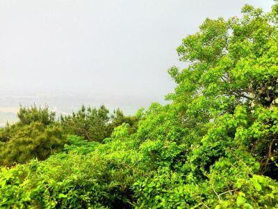 Jiaozuo Mingyue Mountain