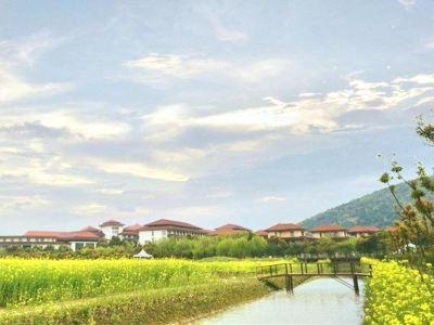 禾沁生態農業產業園
