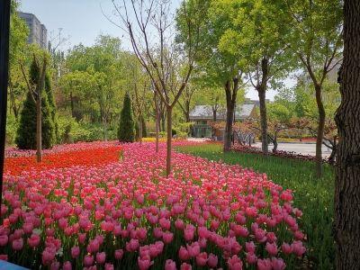 Huayuanshan Tourist Area