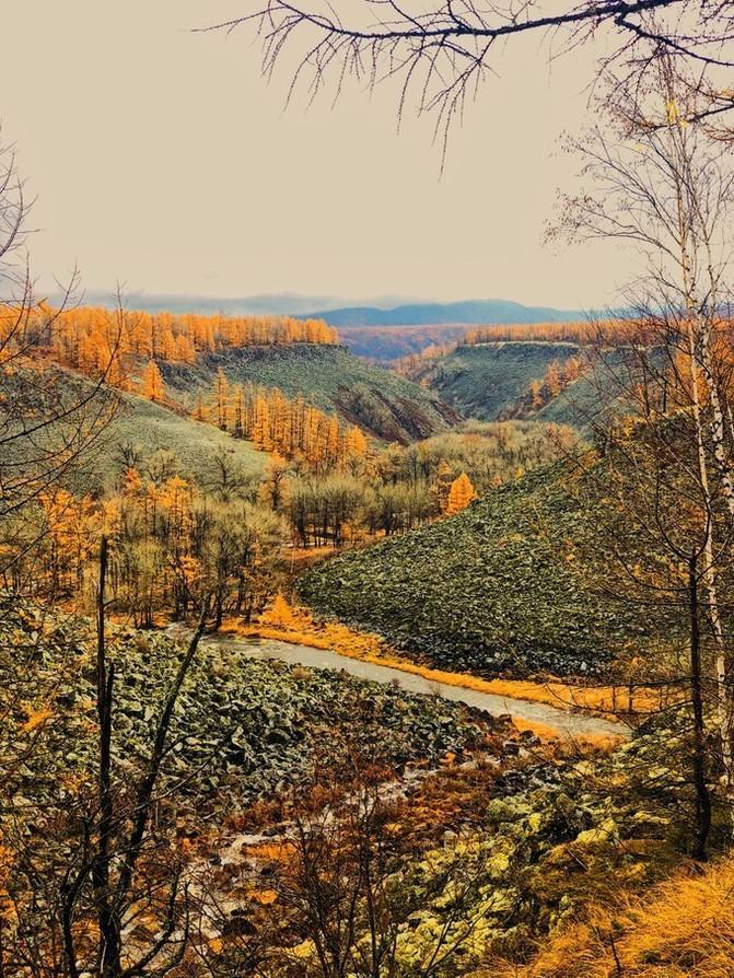 呼伦贝尔大草原 一万个人眼中有一万种呼伦贝尔大草原的秋 – 呼伦贝尔游记攻略插图95