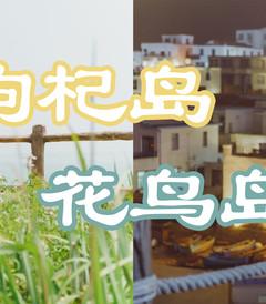 [嵊泗游记图片] 5月,送给自己的生日礼物,一场东海小岛旅行(附枸杞岛、花鸟岛拍照攻略)