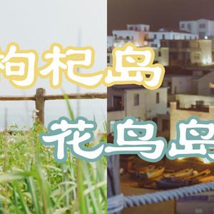 舟山游记图文-5月,送给自己的生日礼物,一场东海小岛旅行(附枸杞岛、花鸟岛拍照攻略)