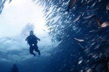 仙本那潜水考证之旅 全新的度假模式 感受海下世界