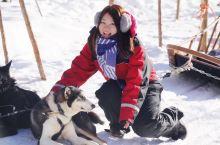 芬兰|纯白浪漫,在圣诞老人的家体验哈士奇雪橇,踏雪进森林