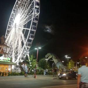 尼亚加拉摩天轮旅游景点攻略图