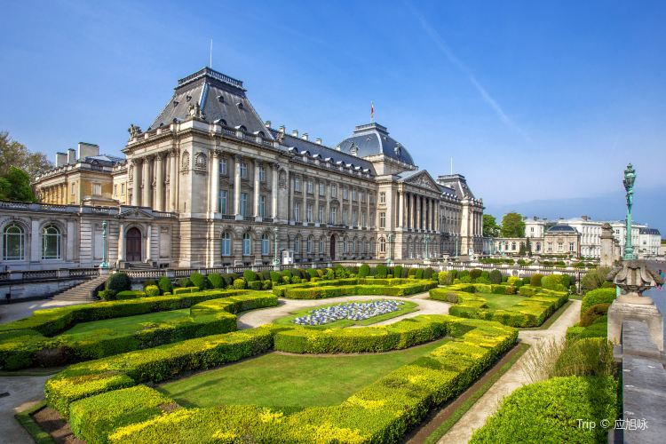 Royal Palace of Brussels4