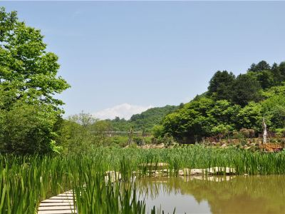 Mount Youran Alpine Wetlands Scenic Area, Qinling Mountains, Shaanxi Province