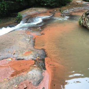 赤水国家级风景名胜区旅游景点攻略图