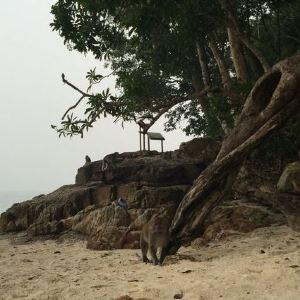 骷髅头海滩旅游景点攻略图