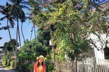 在琅勃拉邦体验古老与浪漫
