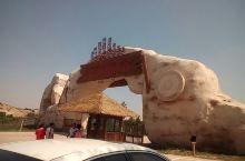 蒙古大营美食