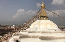 尼泊尔-博达哈大佛塔