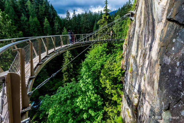 Capilano Suspension Bridge Park1
