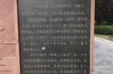 端午节一家三口吴桥杂技大世界两日游