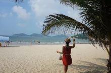 有椰子树的沙滩