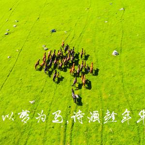 乌鲁木齐游记图文-以梦为马,诗酒趁年华,壮游新疆那拉提。