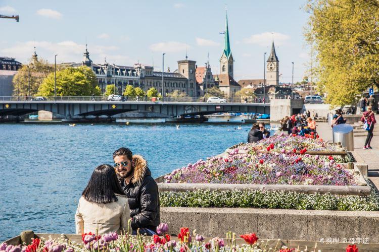 Lake Zurich2