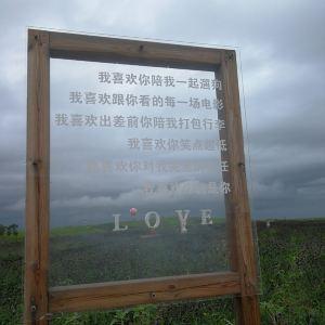 海阳连理岛旅游景点攻略图